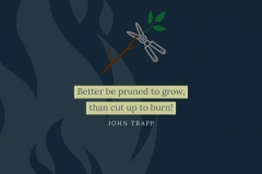 quotation-John-Trapp-02
