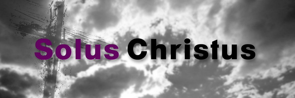 Solus Christus - Jesus Christ's sinless life and substitutionary atonement alone are sufficient for our justification and reconciliation to the Father.