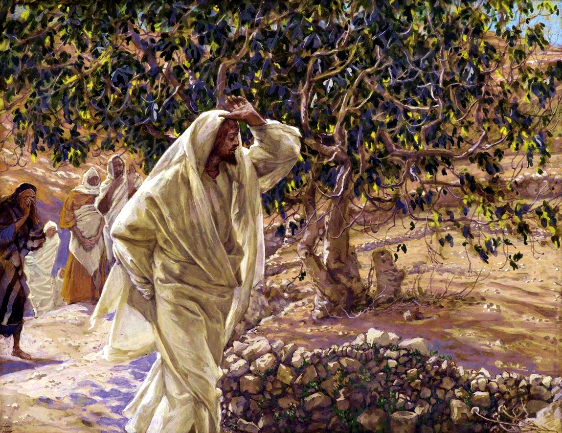 The accursed fig tree - holy week 2015