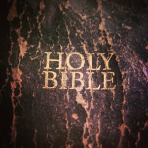 This is my favorite Bible, lots of personal notes and great knowledge inside the study notes etc.